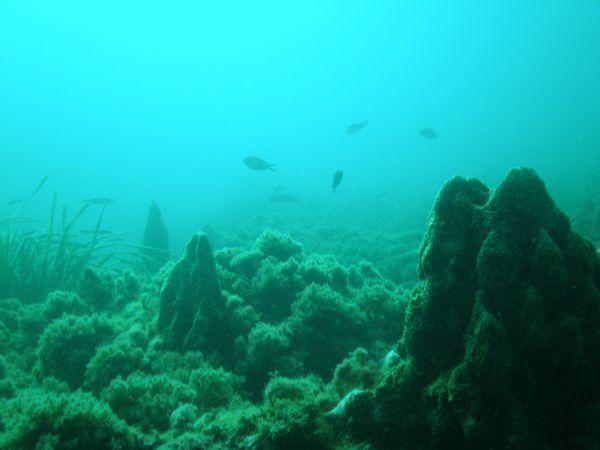 sitios que visitar en Almeria arrecife
