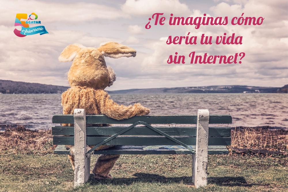 internet_dia